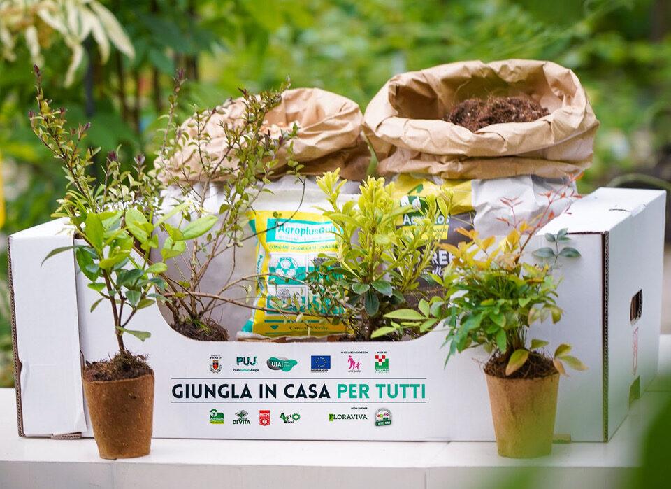 """""""Giungla in casa per tutti"""" con il kit di Prato Urban Jungle"""